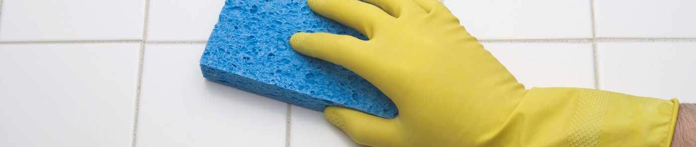 Horizon Janitorial Services